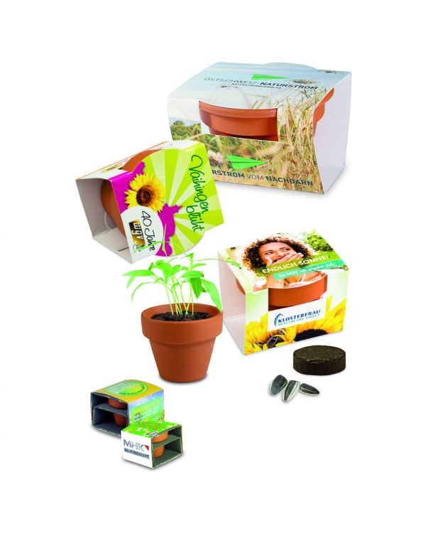 Plant Kit with Sleeve
